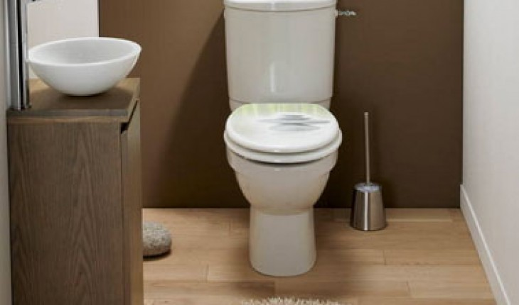 wc couleur taupe