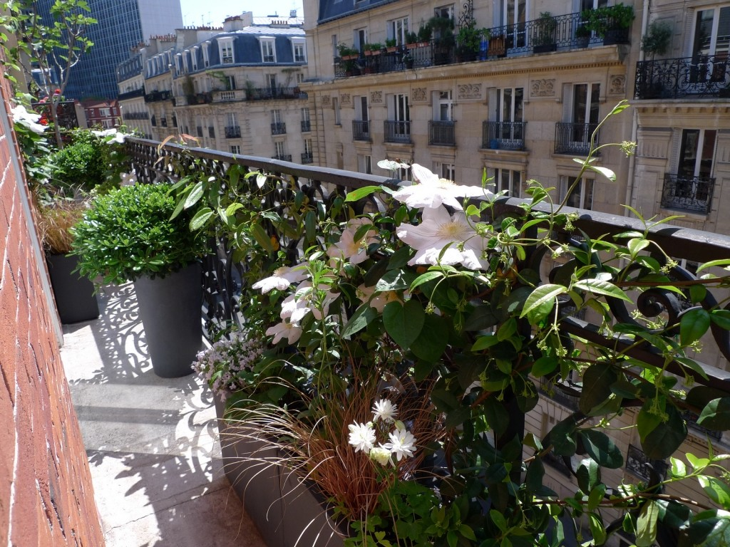 Am nagement d coration balcon parisien - Amenagement balcon paris ...